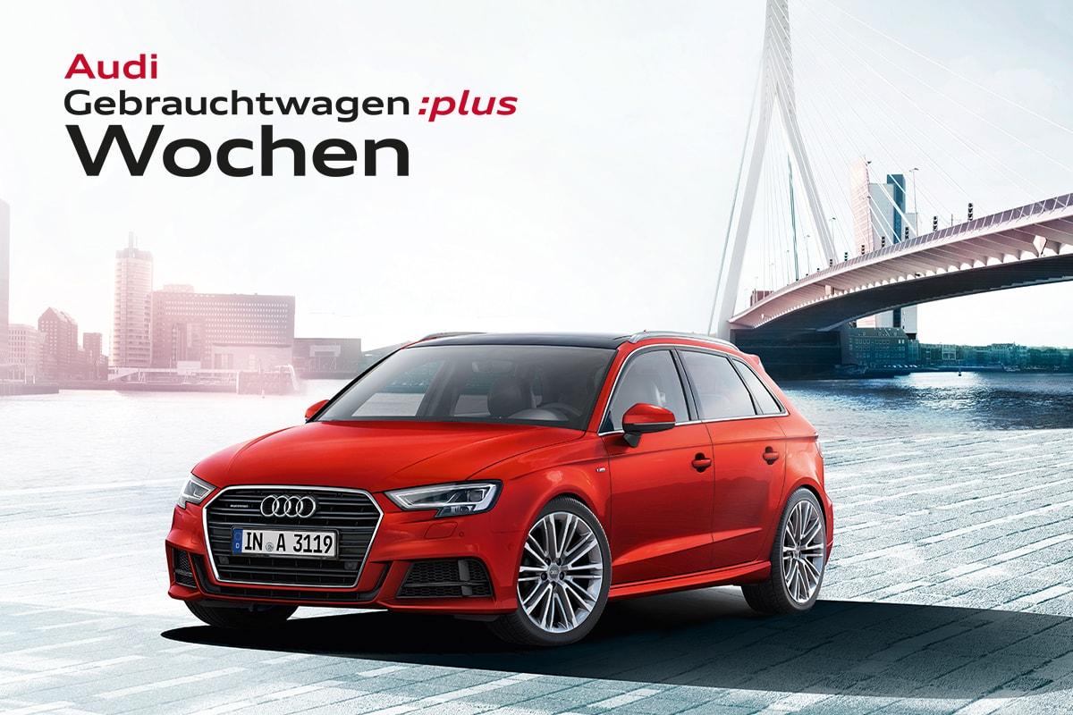 Maschek Audi